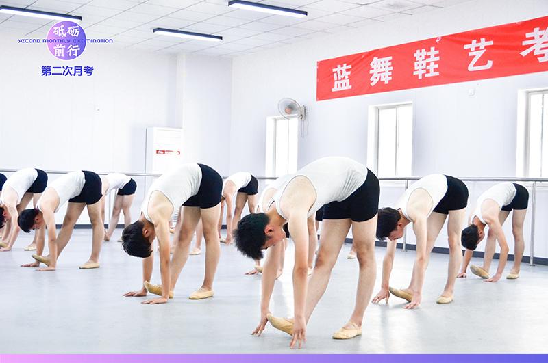 舞蹈艺考的种类有哪些?