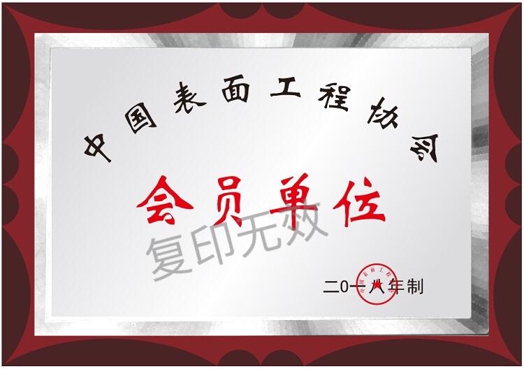 2018年被中国表面工程协会评为会员单位