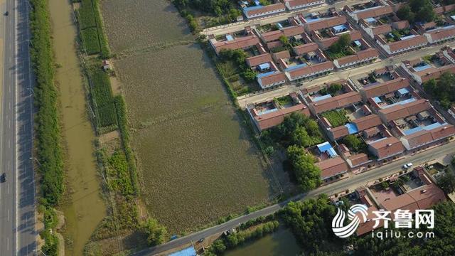 航拍寿光救灾 | 8台抽水机连续排水 营里镇周家子村已恢复往常