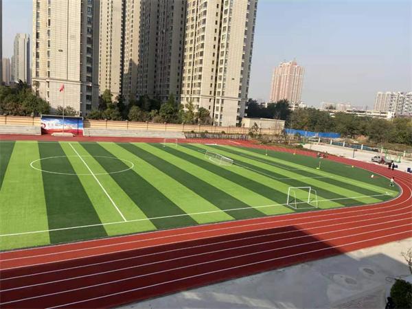 郑州市锦江中学跑道草坪