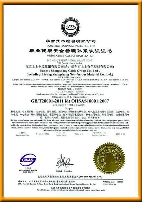 职业健康安全管理体系认 证证书