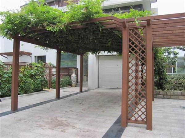 在庭院中搭建葡萄架需要注意什么呢