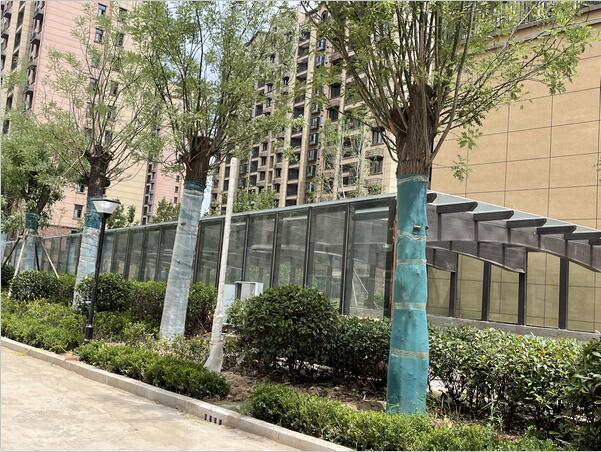 兰考车库玻璃雨棚公司