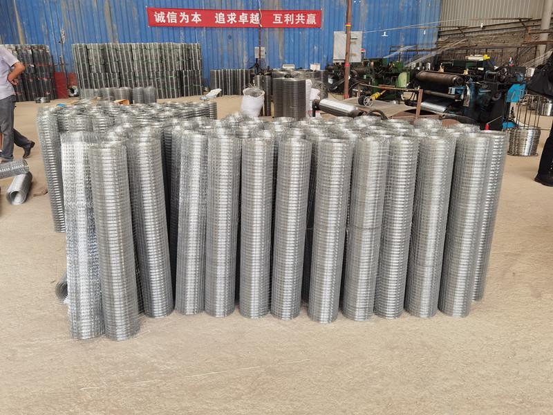 贵州钢丝网