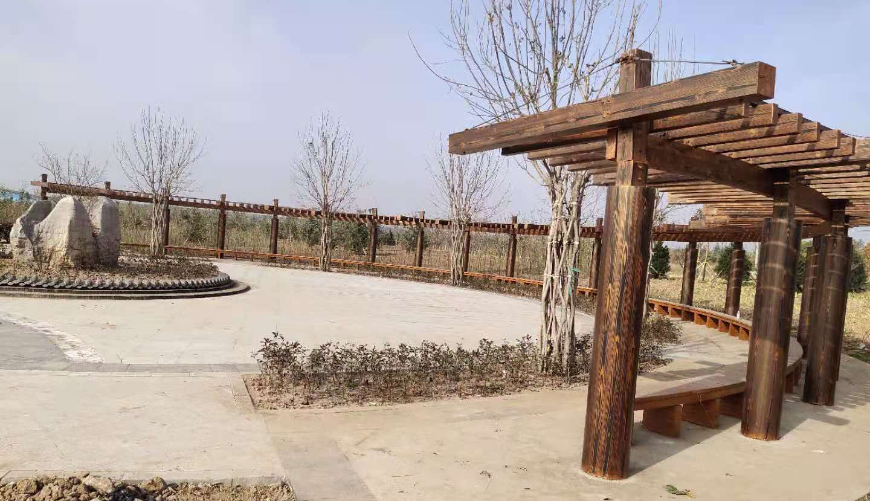 邯郸北羊井公园仿腐木木纹漆