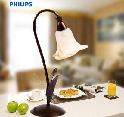 飛利浦吊頂燈照明