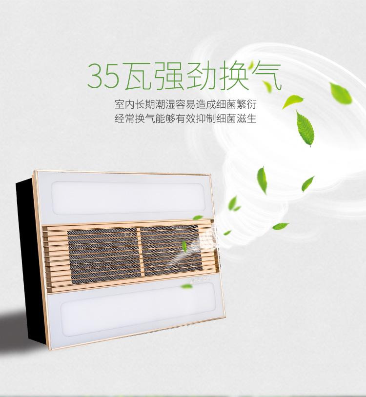 2EH集成吊顶 双LED+强力换气浴室卫生间换气机