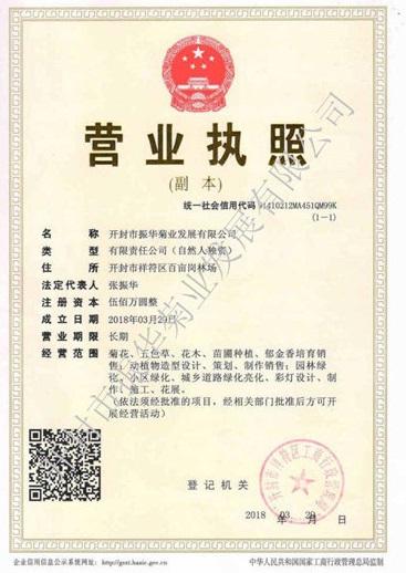 河南五色草造型公司营业执照