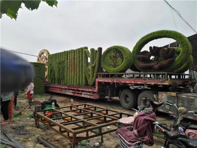 河南五色草造型施工案例