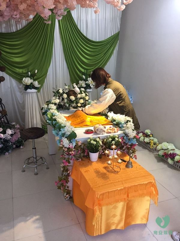 山西宠物殡葬服务