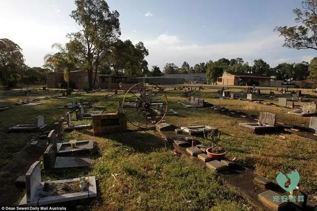 山西宠物墓地