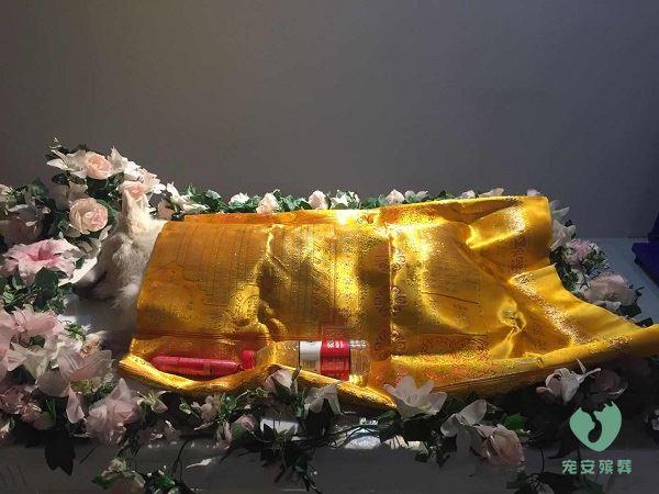 山西宠物殡葬