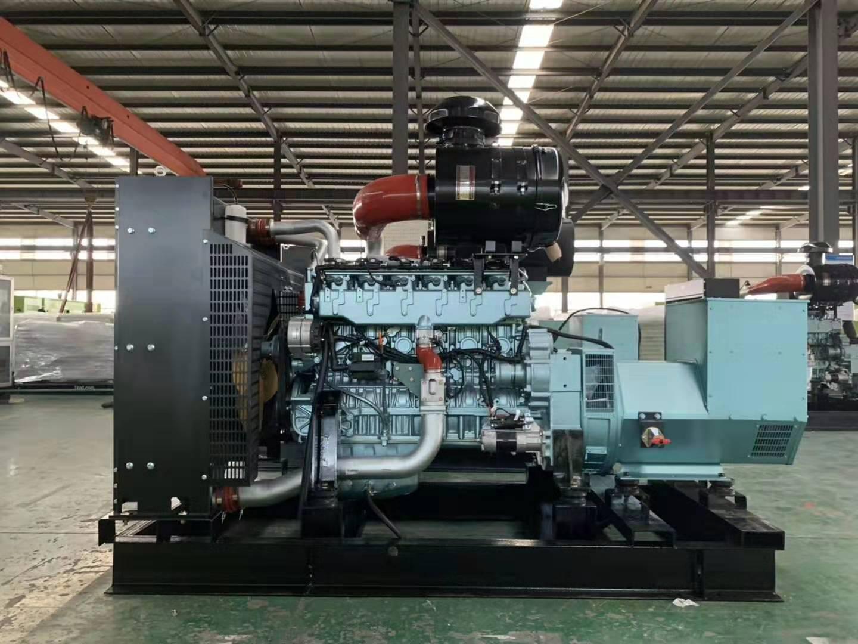 庄浪县公安局业务技术用房康明斯发电机项目