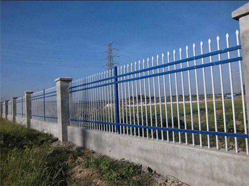 新疆铁艺护栏网