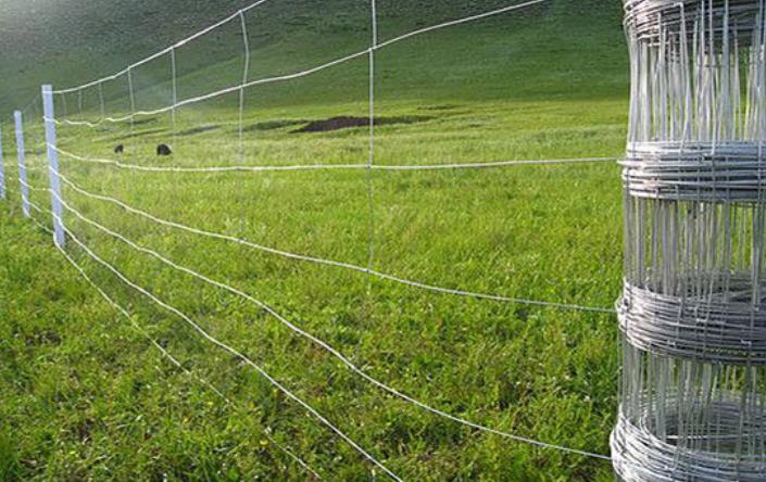 新疆草原圍欄網還是要選擇金盛豐工貿的哦!