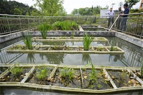 新式法在污水中的运用
