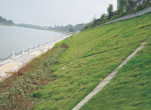 湖北生态混凝土护坡