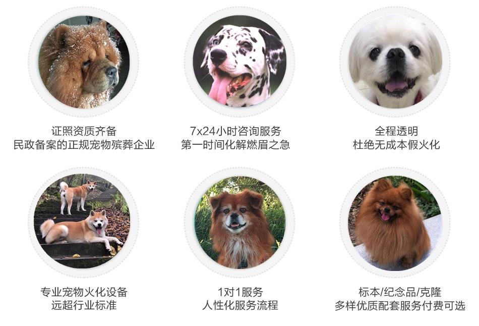 西安宠物墓园服务