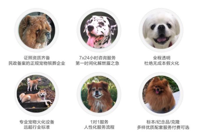 西安宠物墓园价格