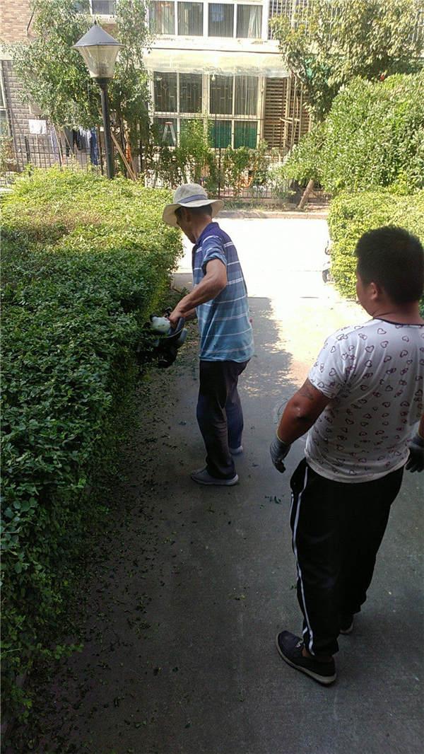 陕西园林养护案例