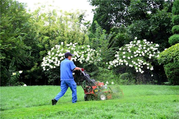 西安园林绿化节约成本,工作效率高