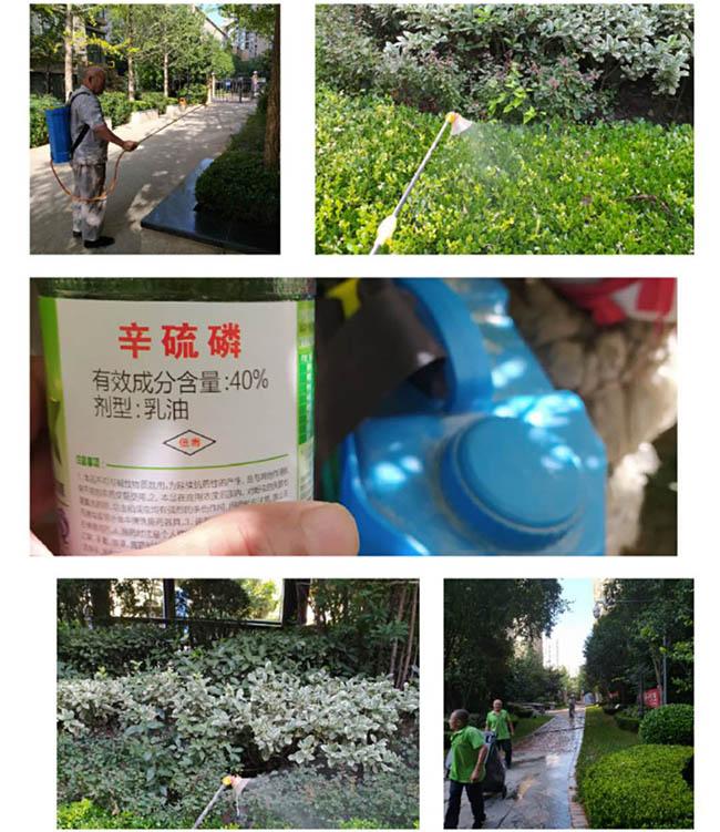 西安化粪池应该什么时候清理的几个误区有哪些?