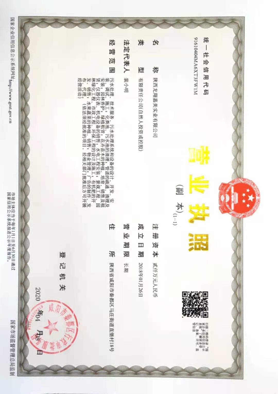 陕西龙翔嘉美实业有限公司营业执照