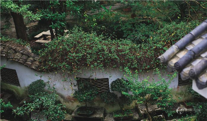 紫薇山庄美景