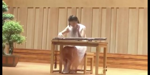 琴在江南,斫琴名家亲手斫制——蔡伟艺