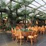 温室大棚生态餐厅