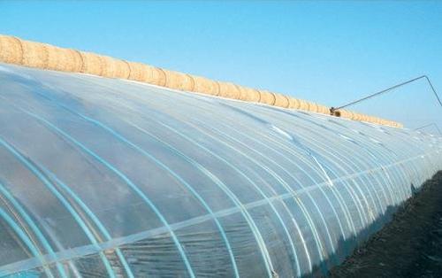 河南薄膜温室大棚施工