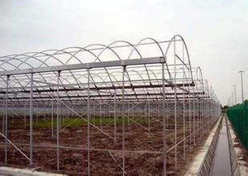 河南薄膜温室大棚施工价格