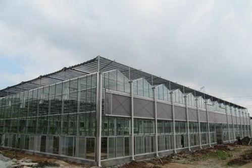 河南玻璃温室大棚施工公司