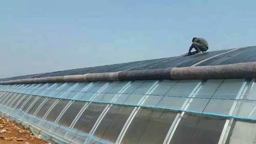 河南薄膜温室大棚公司