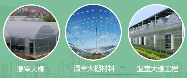 河南温室大棚公司