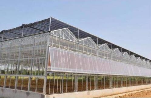 告诉你造成温室中的问题的原因及解决的方法