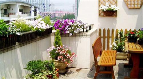 谁的成都屋顶花园春暖花开?
