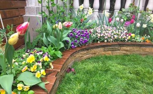 私家花园的植物应该怎么选择呢?