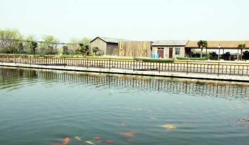 水产养殖需要什么设备|哈素海水产批发销售