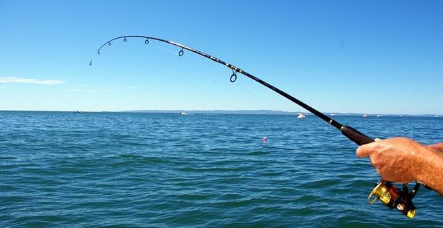 内蒙古四星级渔家乐