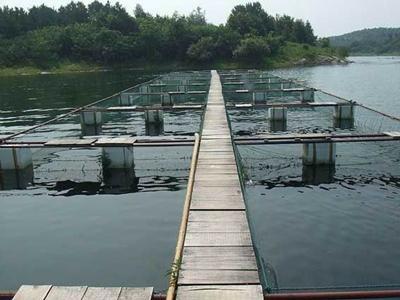在内蒙古水产养殖过程中怎样用磷酸二氢钾肥水