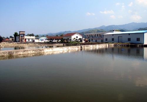 昊海渔业与和林水产站合作