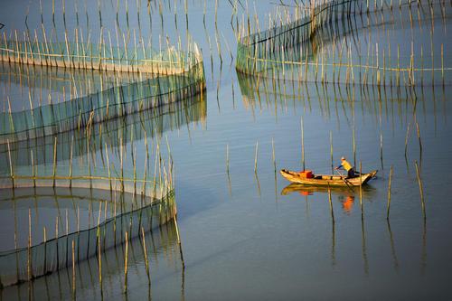 哈素海鱼苗养殖成绩册