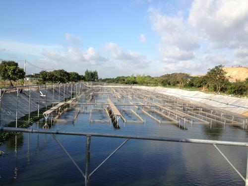 水产养殖中氨氮与亚硝酸盐氮的物理防治措施