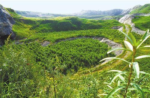 绿色矿山系列丛书《绿色勘探技术》编写研讨会召开