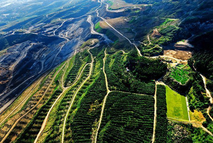 湖南今年力爭復綠545個礦山(點)