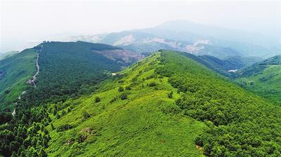 鞍山市自然資資源局持續推進綠色礦山建設工作