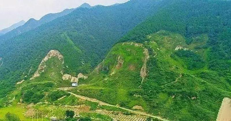 2020中国绿色矿山建设高峰论坛暨生态修复与储备林项目研讨会将于下月举办