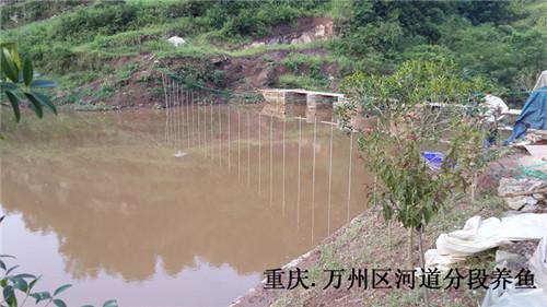 重庆.万州区河道分段养鱼