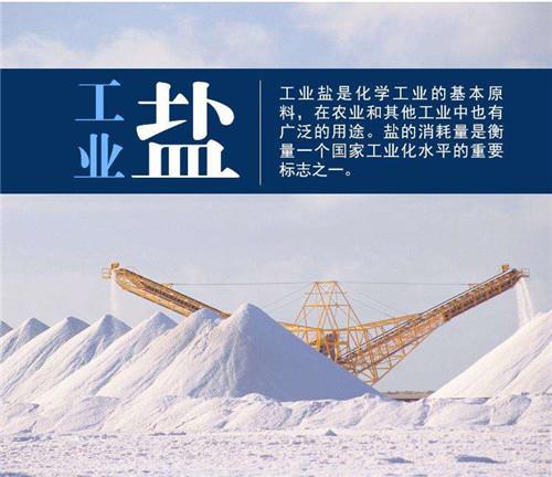 净水材料工业盐的出售